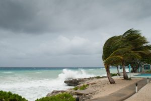How Muni Bond Insurers Are Weathering Recent Storms